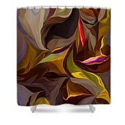 Abstract 022212 Shower Curtain