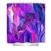 Abstract 022512 A Shower Curtain