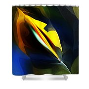 Abstract 051112 Shower Curtain