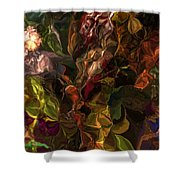 Abstract 061512 Shower Curtain
