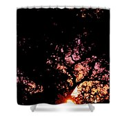Abstract 223 Shower Curtain