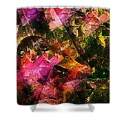 Abstract 270 Shower Curtain
