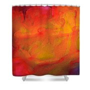 Abstract 279 Shower Curtain