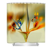 Abstract Flower 2 Shower Curtain