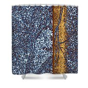 Abstract Fusion 152 Shower Curtain