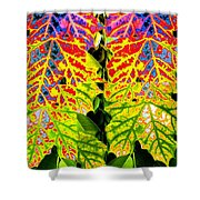 Abstract Fusion 16 Shower Curtain