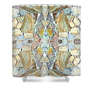 Abstract Fusion 67 Shower Curtain