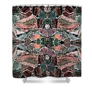 Abstract Fusion 68 Shower Curtain
