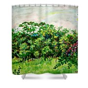 Abstract Landscape 6 Shower Curtain