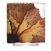 Abstract Sunflower Aceo Shower Curtain