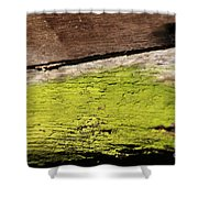 Abstract With Green Shower Curtain