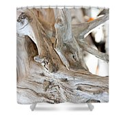 Abstract Wood Shower Curtain