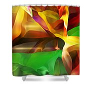 Abstraction 091412 Shower Curtain