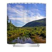Acadian Marsh Shower Curtain