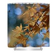 Acer Autumn Shower Curtain