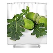 Acorns With Oak Leaves Shower Curtain