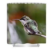 Action Time Shower Curtain