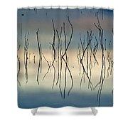 Acuatic Graphics Shower Curtain