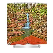 Adams Falls Shower Curtain