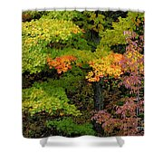Adirondack Autumn Shower Curtain