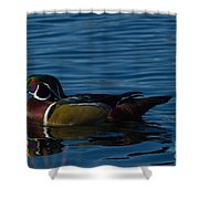Adult Male Wood Duck Shower Curtain