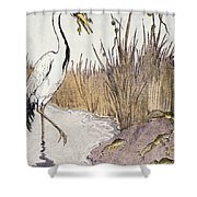 Aesop: Frogs Wish For King Shower Curtain
