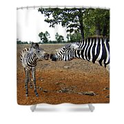 Affectionate Mother Shower Curtain