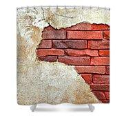 Africa In Bricks Shower Curtain