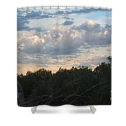 After The Rainstorm Shower Curtain
