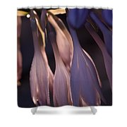 Afterglow Of Hosta Shower Curtain