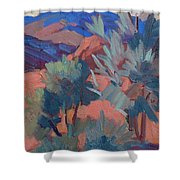 Afternoon Light - Santa Rosa Mountains Shower Curtain