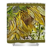 Afternoon Sunflower Shower Curtain