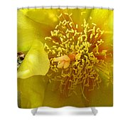 Agave 2010 Shower Curtain