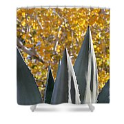 Agave Spikes In Autumn Shower Curtain