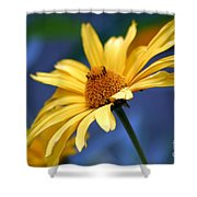 Aging Beauty Shower Curtain
