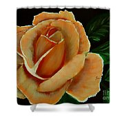 Airbrushed Coral Rose Shower Curtain