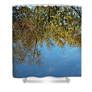 Airplane Reflections Shower Curtain