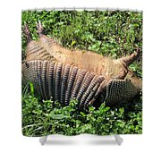 Alabama Road Kill Shower Curtain