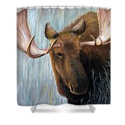 Alaskan Bull Moose Shower Curtain