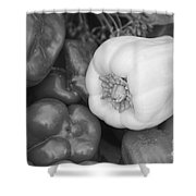 Albino Bullnose Pepper Bw Shower Curtain
