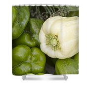 Albino Bullnose Pepper Shower Curtain