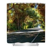 Albufera Road To El Palmar. Valencia. Spain Shower Curtain
