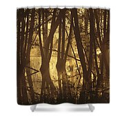 Alder Tree Marshland At Sunrise Shower Curtain