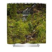 Alger Falls 1 Shower Curtain