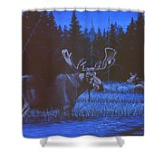 Algonquin Moonlight Shower Curtain by Richard De Wolfe