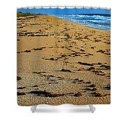 All Beach Shower Curtain