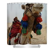 Camel Fashion Shower Curtain