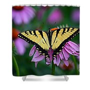 All Fanned Out Shower Curtain