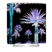 All The Palms Shower Curtain