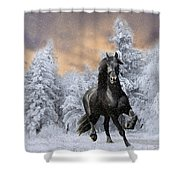 Allegro Coming Home Shower Curtain